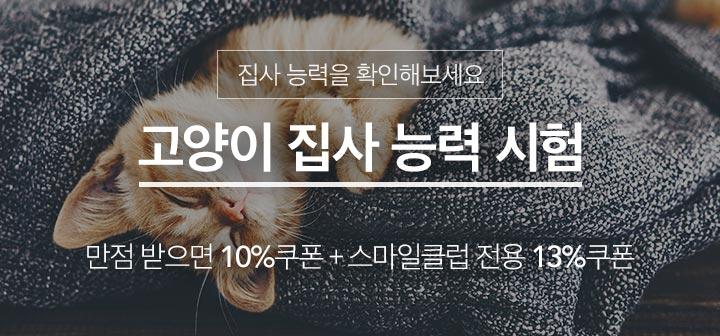 고양이 집사능력 시험