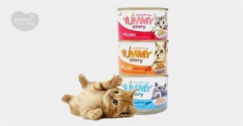동원 야미스토리 고양이캔 160g 12캔