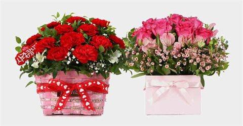 전국꽃배달 카네이션 꽃바구니/꽃다발