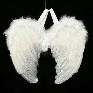 깃털 천사날개-II(소) 할로윈 크리스마스 날개