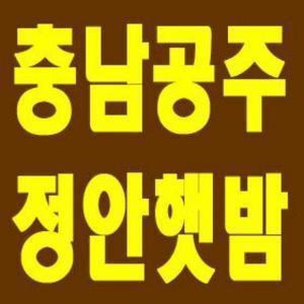 백종원 맛남의광장 촬영농장/알밤/칼집밤/늘푸른농원