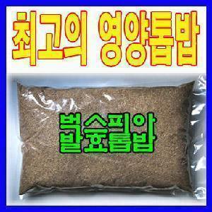 발효톱밥 장수풍뎅이/균사 배양 영양톱밥/4+1 보너스