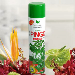 무료배송 핑고 잎광택제/광택제 잎색광택나고/포콘 화분 식물광택제 영양제 식물잎광택제