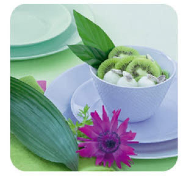 루미낙 에볼루션 강화유리 그릇/공기/대접/접시