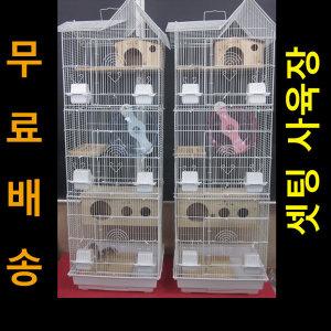 다람쥐.슈가 3017(호화리조트B타입)-다람쥐집(화이트)