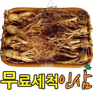 농사꾼인삼 수확기념 한시적저가판매 수삼 인삼(750g)