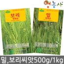 밀씨앗 보리씨앗 (500g/1kg) 새싹재배 씨앗 새싹씨앗
