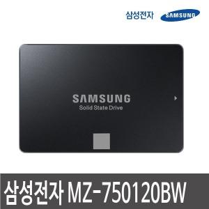 삼성전자 판매점 SSD 750 EVO MZ-750120BW 삼성 SSD