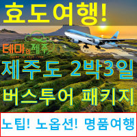  제주도부모님효도여행 제주도버스투어패키지/2박3일일정/테마인제주