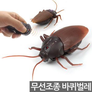 자이언트 바퀴벌레 / RC카 곤충 학습 무선자동차 로취