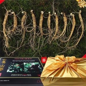 삼바이 토종 산양삼 5년근 10뿌리 산양산삼 장뇌삼