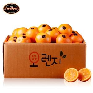 첫수입통관 고당도 퓨어스펙 오렌지3kg/4kg