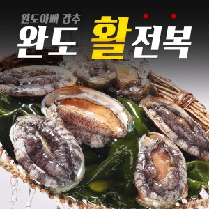 완도아빠추천 횟감용 대전복 11~12미 1kg