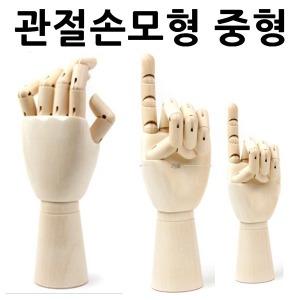 관절손모형 중형 손모형 손골격모형 손관절모양 구체