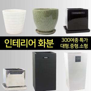 인테리어화분/도자기/시멘트/FRP/화분/대형화분