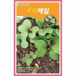 화분백화점 새싹씨앗 씨앗 채소씨앗 새싹케일씨앗