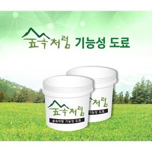 곰팡이 결로방지 숲속처럼기능성도료 2kg