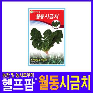헬프팜 월동시금치 20g 씨앗 다농 종자 시금치씨