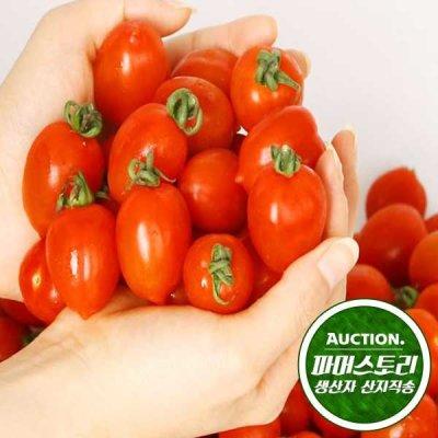 충남 부여 성광모님의 대추방울토마토2kg(1~2번과)