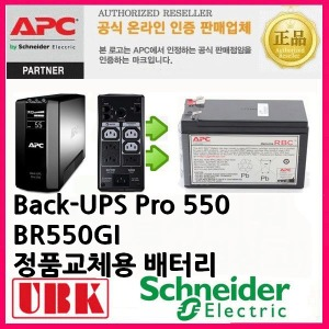 APC BACK-UPS PRO550/BR550GI RBC2 정품배터리교체