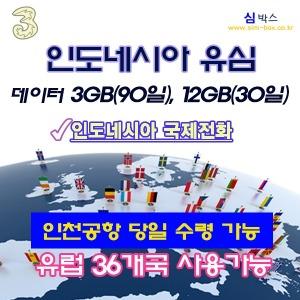 인도네시아유심칩 인도네시아유심 자카르타 발리(3GB)
