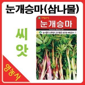 눈개승마씨앗 500립 삼나물씨앗 약초 나물 채소 씨앗