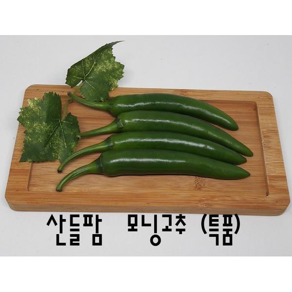 모닝고추(오이맛)아삭이고추(특품)1kg