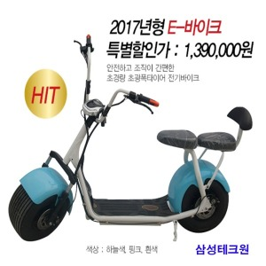 장인모터스(주) 2017년형 E-바이크 전기바이크