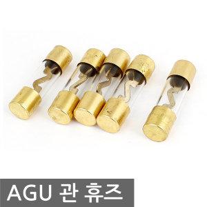 금도금 AGU 유리관 휴즈 퓨즈 카오디오 앰프 엠프