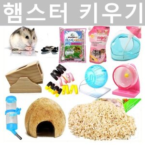 햄스터 사료 용품 쳇바퀴 볼 은신처 화장실 모래 톱밥