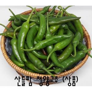 산들팜풋고추(청양고추)(매운고추)(상품)(비품)5kg