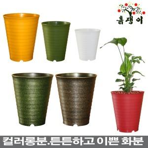 컬러롱분/플라스틱화분/대형화분/텃밭상자/베란다텃밭
