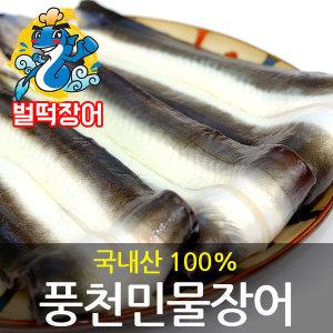 벌떡장어 국내산 풍천 민물장어 1kg  손질후 700~750g