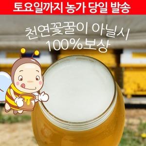 천연벌꿀2.4kg/2017햇꿀/아카시아/잡화/꽃꿀/선물용
