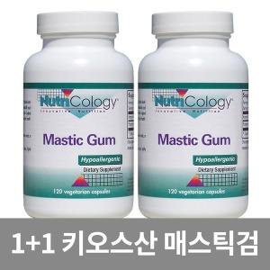 2개 뉴트리콜로지 매스틱검 120 캡슐 매스틱 검