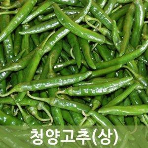 청양고추(상  진주)10kg 1박스 두리반농산