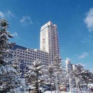 |강원 평창군| 휘닉스파크 평창 호텔