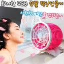 저소음 미니선풍기/USB 2중모터 연꽃 탁상선풍기
