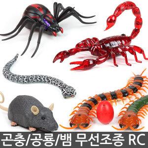 곤충 공룡 무선조종 RC카 / 거미 개미 뱀 전갈 지네