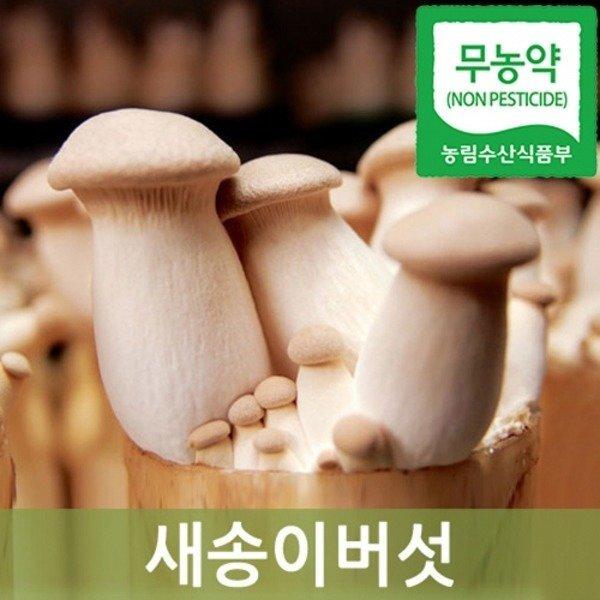 새송이버섯 2kg내외(무농약)