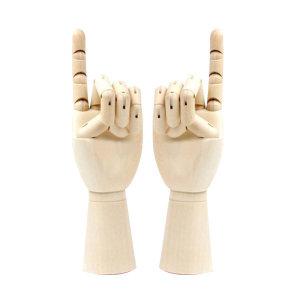 관절 손 모형 오른손/왼손