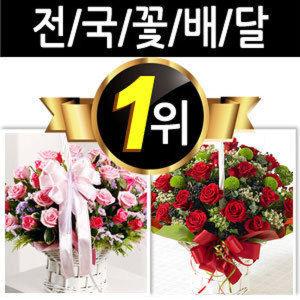 꽃바구니/꽃배달서비스/전국/배달/꽃/수원/수원시