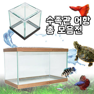 국산 프리미엄 어항 수족관 총모음/구피/베타/열대어