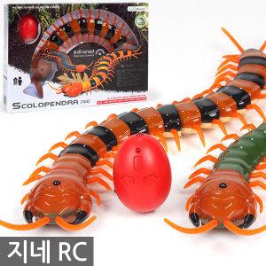 지네 Scolopendra RC카 / 무선자동차 로봇 곤충 학습