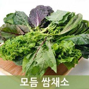 싱싱한 모듬쌈채소 (7종-9종 ) 2kg 두리반 농산