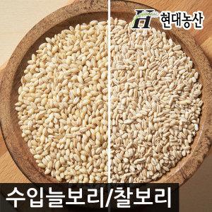 수입보리/늘보리/찰보리/10kg/미국산