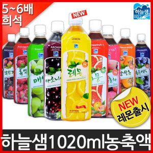 하늘샘 희석음료(1020ml) 과일 원액 농축 혼합