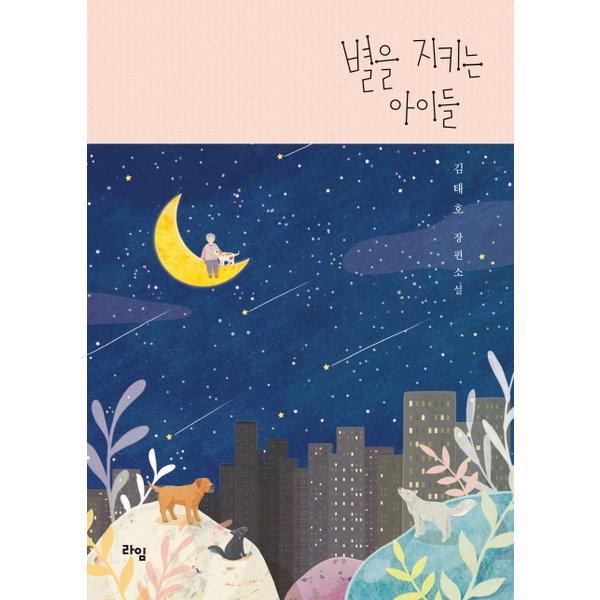 (라임) 별을 지키는 아이들 : 김태호 장편소설 (라임 청소년 문학 29)