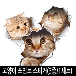 고양이 포인트 스티커 벽지 시트지 3종 세트