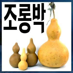 A082/조롱박/소중/박열매/호롱박/표주박